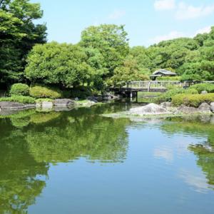 【愛知県名古屋市熱田区】中部地方で日本庭園を見るならココ!白鳥庭園をご紹介!