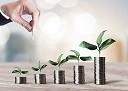 【投資信託】つみたてNISAで100%株式にする理由/超ど素人の資産運用