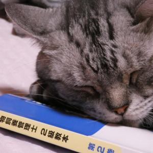 愛玩動物飼養管理士2級取得|課題報告問題と試験問題