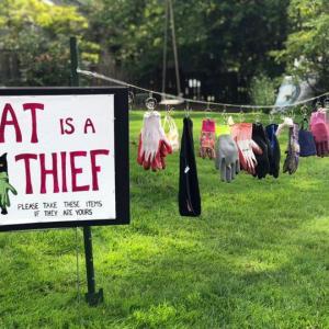 【米国発】愛猫の窃盗癖を暴露する看板が話題に。ドロボーにゃんこ、エズミちゃん