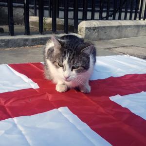 【英国発】イングランドが勝利!サッカー欧州選手権の試合予測に、首相官邸のラリー君が参戦!