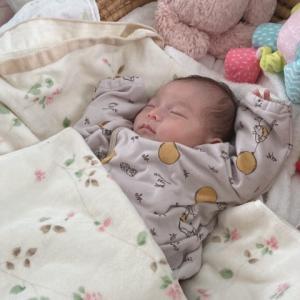 生後1か月半のルーティン(ギャン泣きver