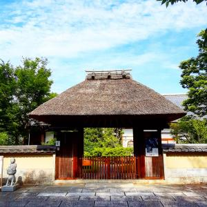 京都ぶらり 朝散歩 高台寺春光院