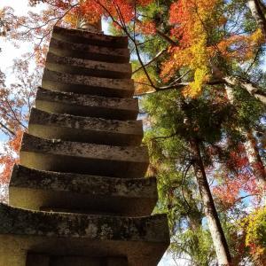 京都ぶらり 紅葉の季節 お薦めスポット岡崎エリア