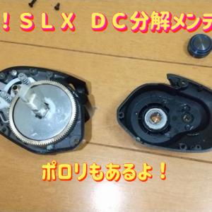 機械音痴が海で使用したシマノのベイトリール「SLX DC 70XG」を分解メンテナンスしてみた ~1回目~