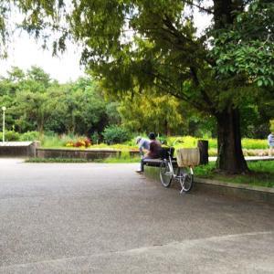 公園のベンチで。