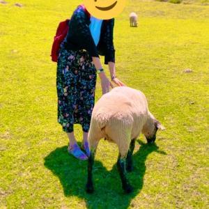 【兵庫】有馬温泉でゆったり、六甲山ではほっこり!