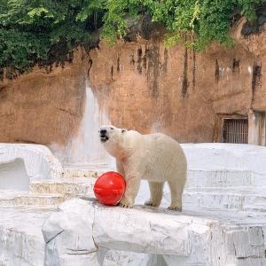 【大阪】天王寺動物園でユニークな動物たちと出会う!