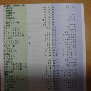 血液検査の結果「脂肪肝」