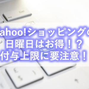 【paypay経済圏・節約】Yahoo!ショッピングの「日曜日」は本当にお得?付与上限額に要注意!