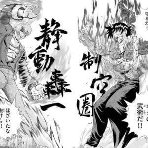 格闘技漫画「カラテ出して~、サンボ出してぇ~、主人公はァ~・・・最強のオリジナル拳法w」←これ