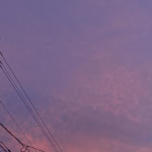 空を見上げると幻想的な夜空