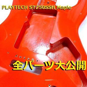 【データ】 PLAYTECH ST250SSH Maple 全搭載パーツ情報公開!