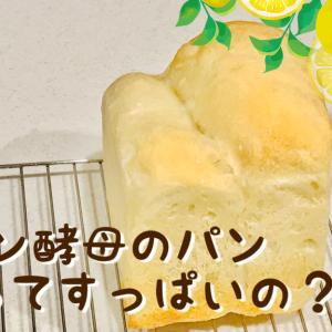 【自家製酵母パン】レモン酵母で作ったパンってやっぱりすっぱい?