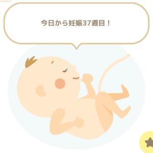 正期産突入と出産の不安