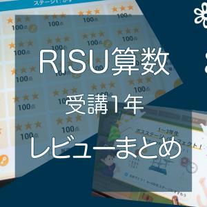 RISU算数のレビューまとめ 先取り学習の進捗状況は?
