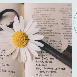 TOEICの勉強で効果のあった英語学習法と継続する期間