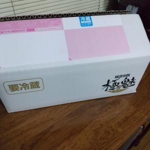 中華蕎麦とみ田 のつけ麺をおうちで楽しむ@銘店伝説 極魅