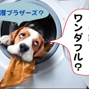 洗濯ブラザーズが教える「洗濯でやってはいけない3つの方法」