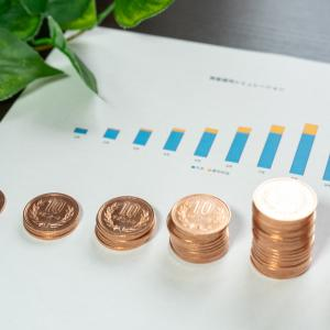 【2021年6月結果】株式投資、仮想通貨、FX、ブログ運用での収入を包み隠さず全て公開します!