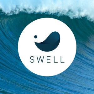 【SWELL】ブログ初心者にこそオススメのWordPressテーマ【体験談】