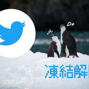 【体験談】twitterアカウント凍結から解除まで【異議申し立て必須(例文あり)】