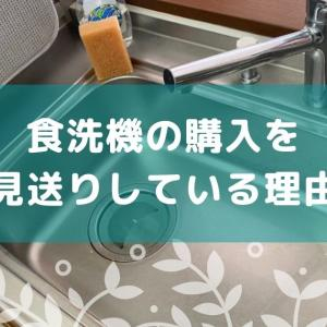 食洗機の購入を見送りしている理由【あえて不便なほうを選ぶミニマリスト】