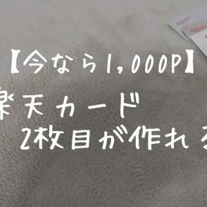 【1,000ポイント!】楽天カード2枚目について分かりやすく紹介!