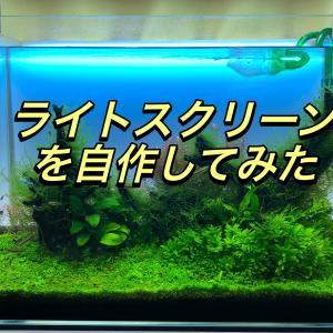 60センチ水槽のライトスクリーンを自作!