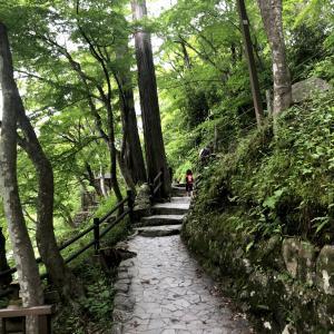 【愛知】香嵐渓はこんなところ!子供と川遊び、自然を満喫できる♪ 6月の新緑シーズンもおすすめ!