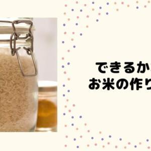 おかずは作り置きできるけど、お米はどうなの?我が家で作る「洗い米」