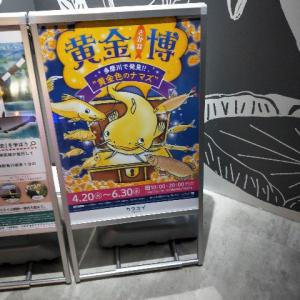 ただの子育て日記/川崎水族館