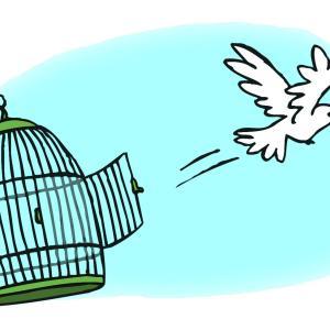 発達障害ワイ「自由になりたいンゴねぇ」