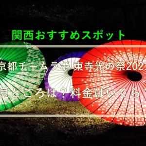 京都チームラボ 東寺光の祭2021の見どころは?料金はいくら?