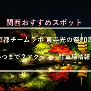 京都チームラボ 東寺光の祭2021はいつまで?アクセス・駐車場情報!