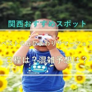 堺ハーベストの丘ひまわりサマーフェスタ2021の日程は?混雑予想は?
