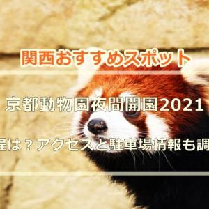 京都動物園夜間開園2021の日程は?アクセスと駐車場情報も調査!