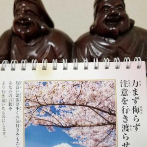 大橋悠依選手金メダルおめでとうございます!