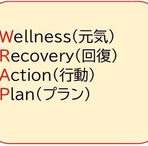 WRAP(ラップ:元気回復行動プラン)の力でうつ病と向き合う、体系編