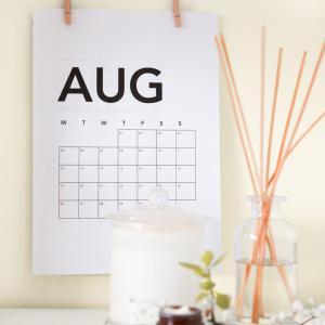 【40代主婦】8月にたくさん読んでいただいた記事5選で振り返る。【シンプルライフ】