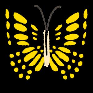 【虫嫌いな人は閲覧ダメ】アゲハチョウが巣立ち、再び王蟲を飼う・・・。