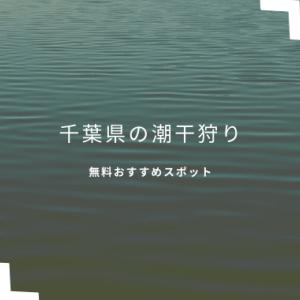 潮干狩り千葉県内おすすめはどこ?2021年無料で蛤やあさりが採れるスポットは?