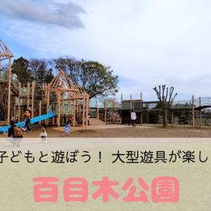 百目木公園の大型遊具で子どもと遊ぼう!