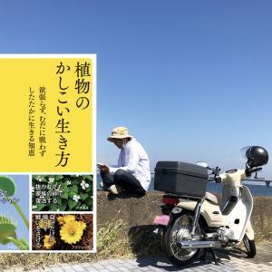 読後メモ|植物のかしこい生き方(田中修 著)