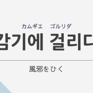 「風邪を引く」は韓国語で「감기에 걸리다     (カムギエ コルリダ)」