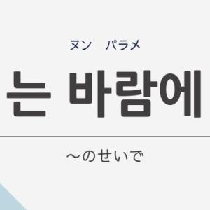 韓国語の「는 바람에 (ヌン パラメ)」は「~したせいで」意味や文法を解説