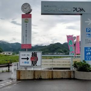 白崎海洋公園→荒野龍神スカイラインドライブ②