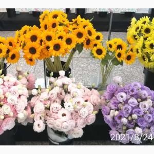 花の展示会🌼梱包用品《フリマ、メルカリ等》