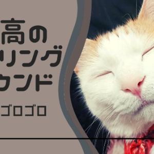 最高のヒーリングサウンド猫のゴロゴロ
