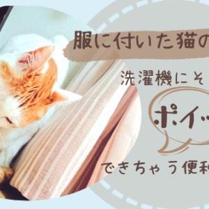 服についた猫の抜け毛!!洗濯機にそのままポイッできちゃう便利アイテム♡